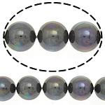 Südsee Muschelperlen, rund, bunte versilbert, 12mm, Bohrung:ca. 0.5mm, 34PCs/Strang, verkauft per 16 ZollInch Strang