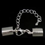 Messing Klaue Karabinerverschluss, Platinfarbe platiniert, mit Endkappe, 42mm, 6x12x3mm, 9x13mm, Bohrung:ca. 8.5mm, 100SetsSatz/Menge, verkauft von Menge