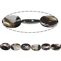 Turbanschnecken Perle, flachoval, 25x18x6mm, Bohrung:ca. 1mm, Länge:ca. 16 ZollInch, 5SträngeStrang/Menge, verkauft von Menge