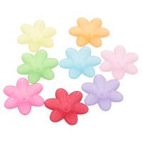 Acryl Perlkappen, Blume, satiniert & transluzent, gemischte Farben, 26x23x6mm, Bohrung:ca. 1mm, ca. 500PCs/Tasche, verkauft von Tasche