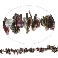Biwa kultivierte Süßwasserperlen, Natürliche kultivierte Süßwasserperlen, farbenfroh, 9x2mm-26x7mm, Bohrung:ca. 0.8mm, verkauft per ca. 15.5 ZollInch Strang