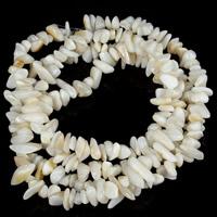 Natürliche weiße Muschelperlen, Klumpen, 5-8mm, Bohrung:ca. 1.5mm, ca. 120PCs/Strang, verkauft per ca. 31 ZollInch Strang