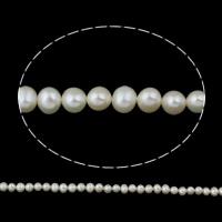 Lagerluft Süßwasser Perlen, Natürliche kultivierte Süßwasserperlen, Kartoffel, natürlich, weiß, Klasse AA, 5-6mm, Bohrung:ca. 0.8mm, verkauft per ca. 14.5 ZollInch Strang