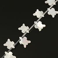 Natürliche weiße Muschelperlen, 10.50x14x2.50mm, Bohrung:ca. 0.5mm, ca. 20PCs/Strang, verkauft per ca. 9.5 ZollInch Strang