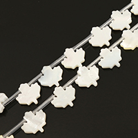 Natürliche weiße Muschelperlen, Ahornblatt, 12x12x2.50mm, Bohrung:ca. 0.5mm, ca. 20PCs/Strang, verkauft per ca. 10.5 ZollInch Strang