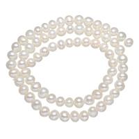 Natürliche Süßwasser, lose Perlen, Natürliche kultivierte Süßwasserperlen, weiß, Grade A, 5-6mm, Bohrung:ca. 0.8mm, verkauft per ca. 14.5 ZollInch Strang