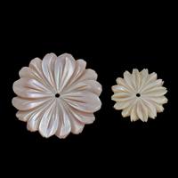 Natürliche Rosa Muschelperlen, Blume, verschiedene Größen vorhanden, Bohrung:ca. 1mm, 10PCs/Tasche, verkauft von Tasche