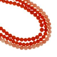 Natürliche Korallen Perlen, rund, keine, 5.5mm, Bohrung:ca. 1mm, Länge:ca. 15.3 ZollInch, 10SträngeStrang/Tasche, ca. 72PCs/Strang, verkauft von Tasche