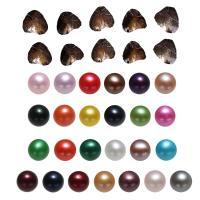 Süßwasser kultivierte Liebe wünschen Perlenaustern, Natürliche kultivierte Süßwasserperlen, Kartoffel, gemischte Farben, 7-8mm, 25PCs/Menge, verkauft von Menge