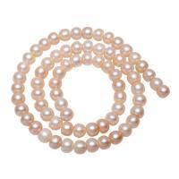 Lagerluft Süßwasser Perlen, Natürliche kultivierte Süßwasserperlen, Kartoffel, natürlich, Rosa, 7x5mm, Bohrung:ca. 0.8mm, verkauft per ca. 15.5 ZollInch Strang