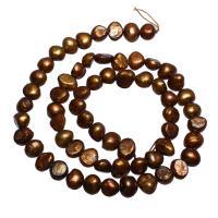 Barock kultivierten Süßwassersee Perlen, Natürliche kultivierte Süßwasserperlen, Klumpen, Kaffeefarbe, 6-7mm, Bohrung:ca. 0.8mm, verkauft per ca. 14.5 ZollInch Strang