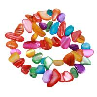 Natürliche Süßwasser Muschel Perlen, Klumpen, gemischte Farben, 10-20mm, Bohrung:ca. 0.8mm, verkauft per ca. 15.5 ZollInch Strang
