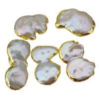 Natürliche kultivierte Süßwasserperlen Perle, Klumpen, goldfarben plattiert, 14-17x22-30x5-10mm, Bohrung:ca. 0.5mm, 10PCs/Menge, verkauft von Menge