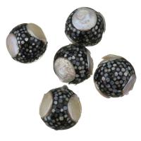 Barock kultivierten Süßwassersee Perlen, Natürliche kultivierte Süßwasserperlen, mit Seeohr Muschel, 21mm, Bohrung:ca. 1mm, 10PCs/Menge, verkauft von Menge