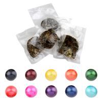 Akoya kultivierte Seeperle Oyster Perlen, Akoya Zuchtperlen, rund, keine, 11-13mm, 5PCs/Menge, verkauft von Menge