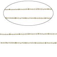 Edelstahl ovale Kette, verschiedene Größen vorhanden & Oval-Kette, Goldfarbe, 100m/Tasche, verkauft von Tasche