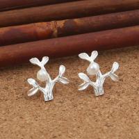 Sterling Silber Schmuck Ohrring, 925er Sterling Silber, mit Kunststoff Perlen, Branch, für Frau, 13x13mm, verkauft von Paar